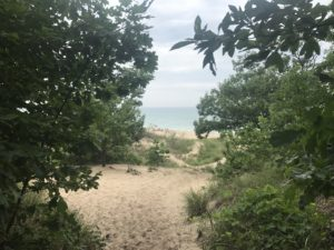 Warren Dunes and Grand Mere State Parks